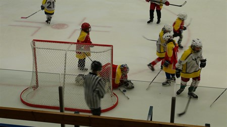 Tjejhockey 2014-01-25