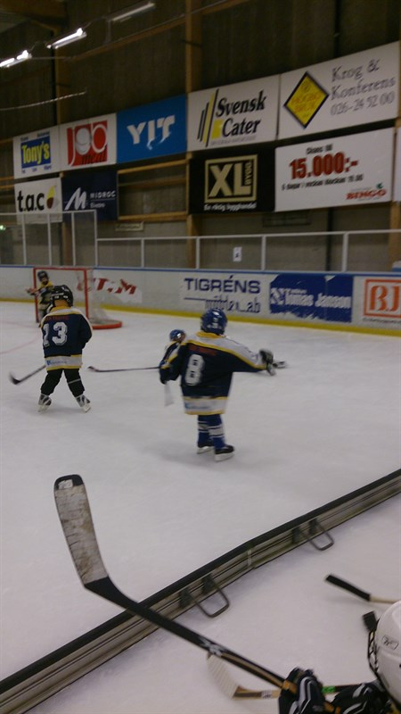Hockeyskolans dag sandviken 2014 08:a laget