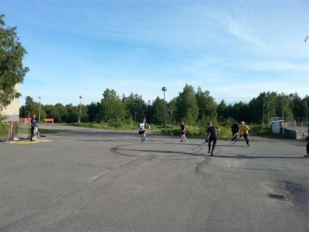 Sommarträning 2014